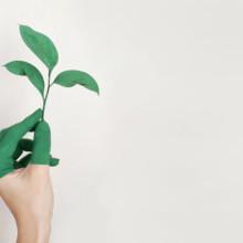 La crescita personale: questo mistero
