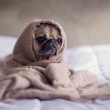 Ipnosi per dormire: come usare l'autoipnosi contro l'insonnia